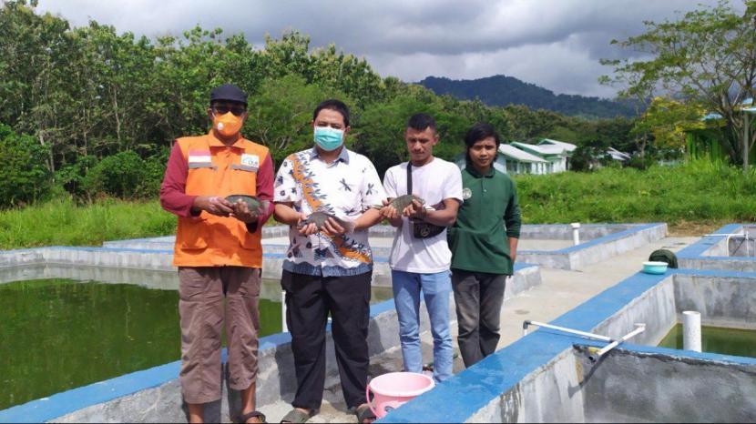 LMI Jalankan Budi Daya Ikan Air Tawar di Halmahera Selatan